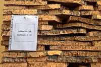Graded bark of the cork oak, São Brás de Alportel, Algarve, Portugal
