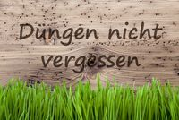 Bright Background, Gras, Duengen Nicht Vergessen Means Dont Forget Dung
