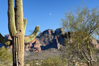 Saguaro Moon Superstition Mountains