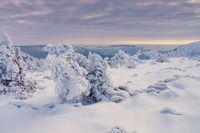 Riesengebirge im Winter - Giant Mountains in snowy winter