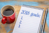 2018 goals list in notebook