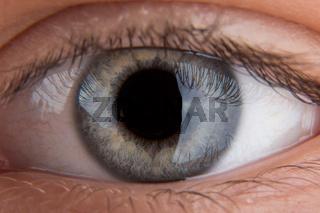 Human eye close-up.