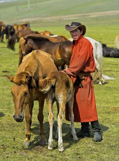Junger Mann bringt Fohlen zur Beruhigung der Stute beim Melken, Mongolei