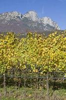 Autumn day in Trentino