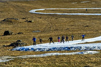 Cross-country skiers practicing on loops of cross-country skiing runs of artificial snow, France