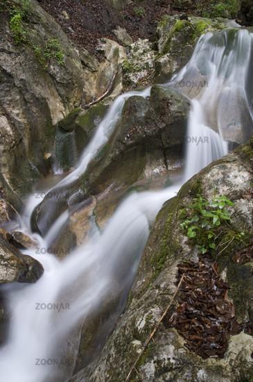 Gebirgsbach im Nationalpark Kalkalpen, Molln, Oberösterreich, Österreich
