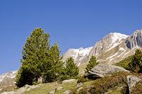 Traumlandschaft in Südtirol