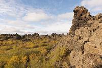 Iceland, bizarre lava forms at Dimmuborgir