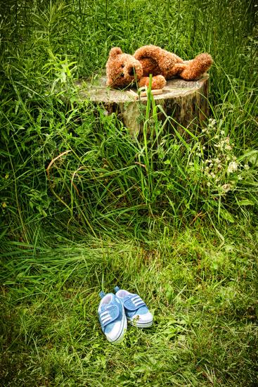 Little stuff teddy bear laying on an  tree stump