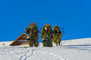 Wüeschte Silvesterkläuse ziehen am Alten Silvester, Silvesterchlausen in Urnäsch, Schweiz