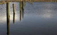Pier columns composition