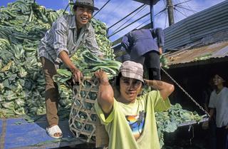 Arbeitswelt, Vietnam - Working world, Vietnam