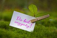 The words Du bist einzigartig! with a seedling
