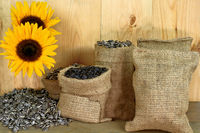 Sunflower seeds, burlap bags, sunflower blossom, wooden table and wall