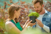 Man smelling potted plant