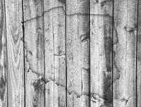 Karte von Polen auf verwittertem Holz - Map of Poland on weathered wood