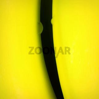 Bananen 006