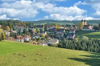D-_Schwarzwald--St.Maergen.jpg
