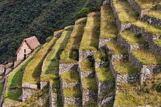 Agricultural stone terraces at  Machu Picchu in Peru