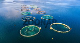 Farm salmon fishing Aerial FPV drone photography.