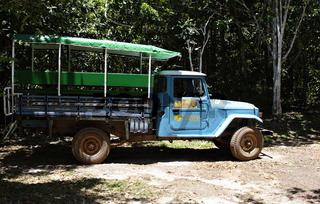 Pick-up in Ecoparque de Una, Bahia, Brasilien, Südamerika