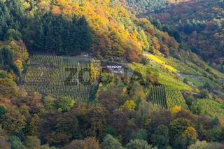 Weinort Rech, Rotweinwanderweg, Ahrtal
