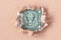 American currency dollar bill eagle