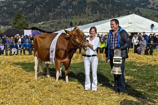 Die Kuh Missy als Gewinner des Miss Red Holstein Preises,SWISSCOW Topschau Saanenland,Gstaad,Schweiz