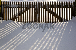 Der Zaun und seine Schatten