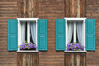 Two windows with green shutters, curtains and potted flowers on the window frame, Saas-Fee, Valais