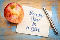 Every day is a gift inspiraitonal reminder