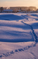 Footpath traces in the snow in russian  Altai village in Winter at morning time