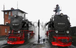 Harzer Neubauloks