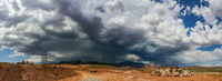 Ominous Stormy Sky and Cumulus Clouds with Rain Pano in the Desert