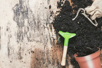 Small rake and flower pot with soil