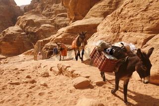 Das Kloster oder Monastery in der Historischen Felsstadt Petra im Sueden von Jordanien