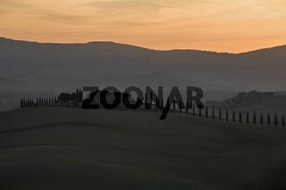 Typischer Bauernhof in Morgendaemmerung, Toskana, Typical farm at dawn, Tuscany, Italy