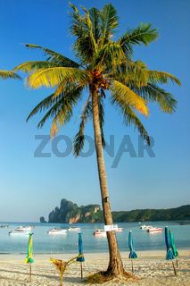 Ao Loh Dalum beach with sun umbrellas on Phi Phi Don Island, Krabi Province, Thailand