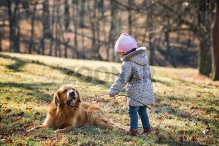 Baby girl playing with golden retriever dog