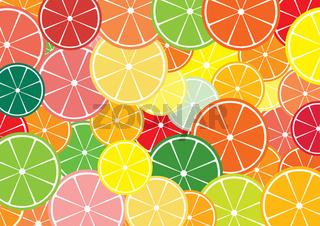 Citrus slices multicolored background.