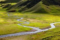 Small rivers in alpine meadows