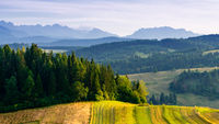 Panorama of the Tatras seen from the Pieniny side