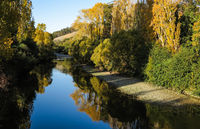 Riverbank in autumn