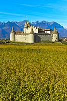 Vine and wine museum Aigle Castle, Chateau d'Aigle, Aigle, Vaud, Switzerland