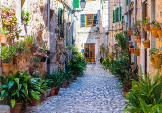 Straße mit Pflanzen in Valldemossa, Mallorca