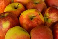 apples;