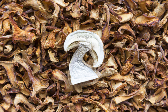 Dried chanterelle and boletus mushrooms