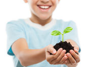 Handsome smiling child boy holding soil growing green sprout leaf