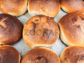 Pumpkin seed buns on baking paper sfter baking at close-up