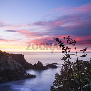 New Zealand Marlborough Sunrise